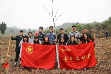 团总支组织开展植树活动